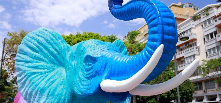 """""""Liotru d'autore by gloTM"""": Ligama colora e anima il quinto elefante  in Piazza Nettuno, sul lungomare catanese"""